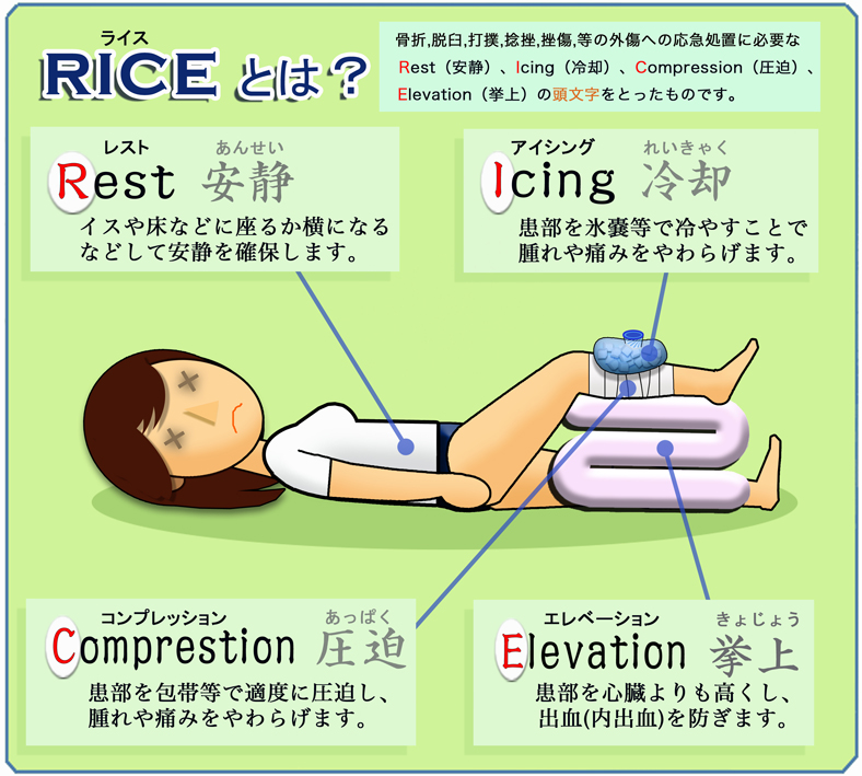 rice_01