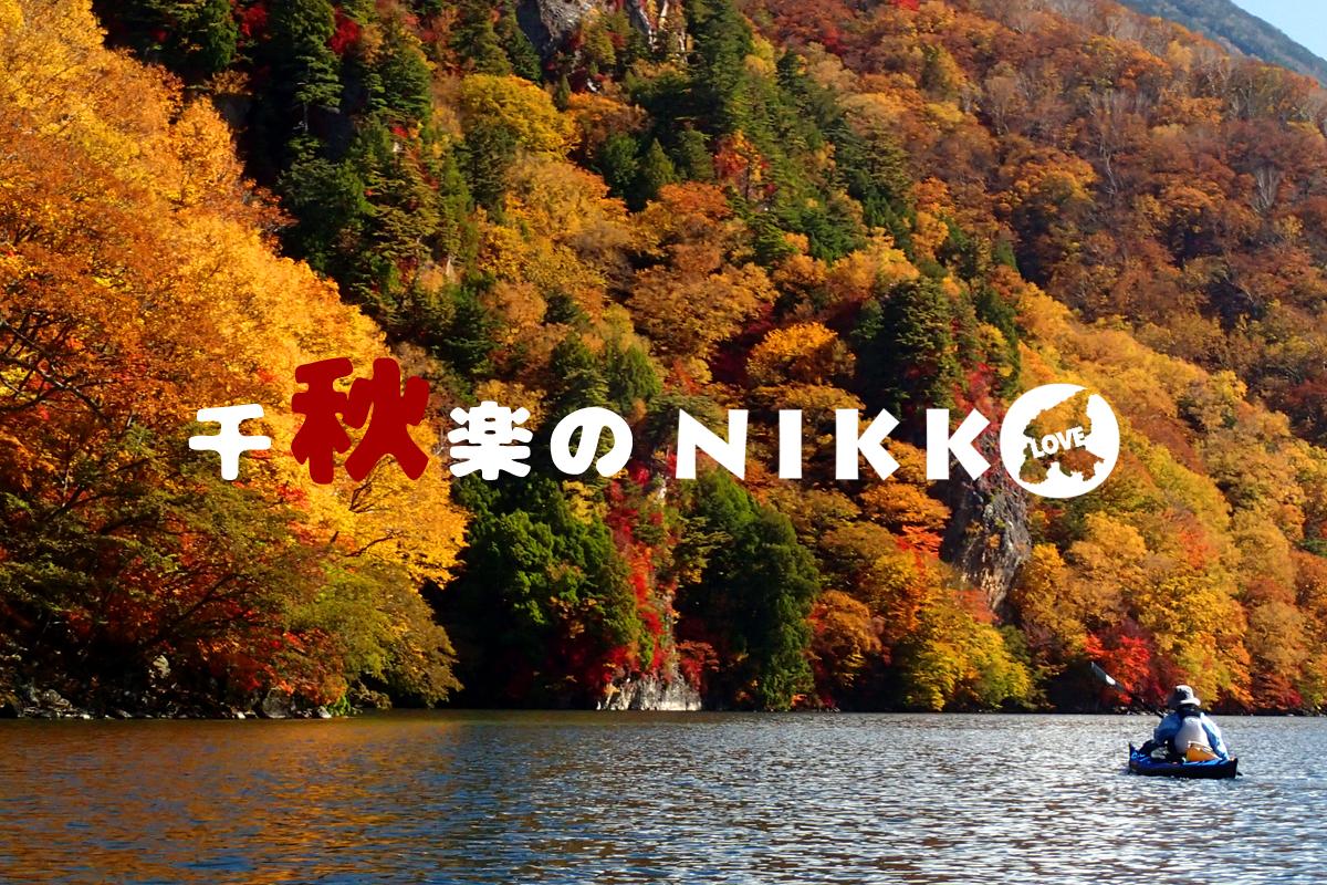 aki-nikko001